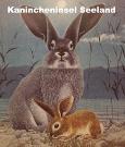 Kanincheninsel